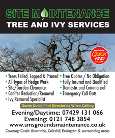 Site Maintenance Tree and Ivy Services